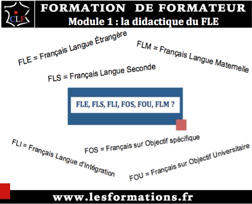 Formateur fle module 1 didactique fle