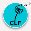 Logo clf www lesformations fr